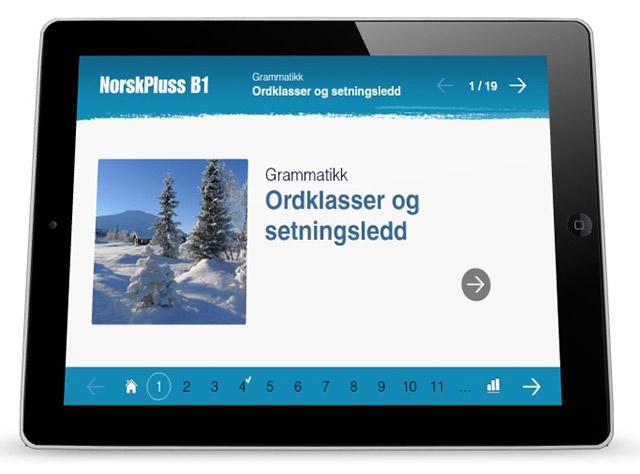 NorskPluss Grammatikk B1