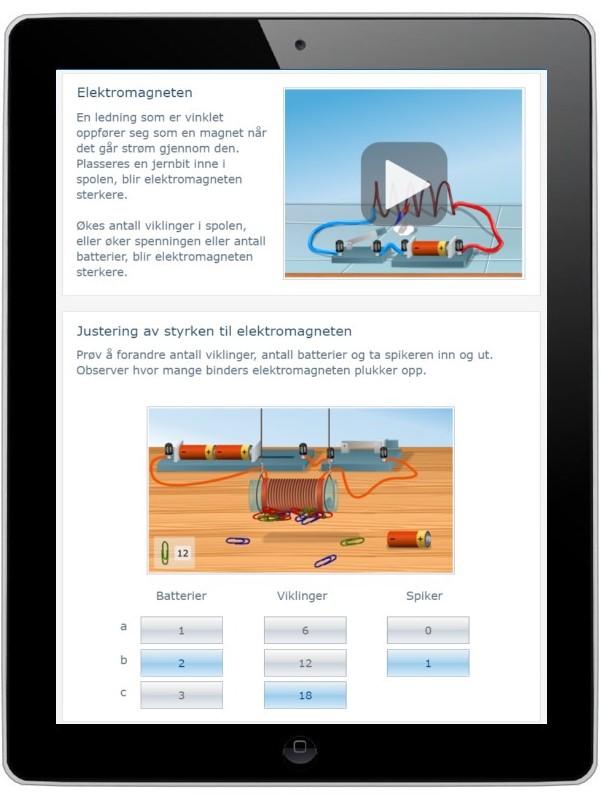 Digitalt læremiddel for tverrfaglig undervisning for Fagfornyelsen og underveisvurdering